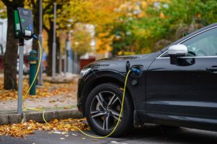Electric cars will be cheaper than combustion models within 5 to 6 years